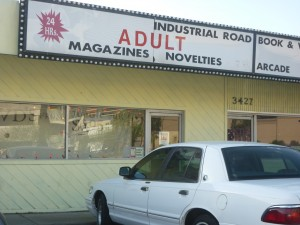 Industrial Road Book and Video 300x225 Porn Shops and Blood Wrestling
