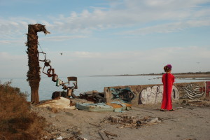 020 300x200 The Post Apocalyptic Wonders of the Salton Sea (and Disneyland on Shrooms)