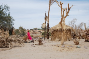 033 300x200 The Post Apocalyptic Wonders of the Salton Sea (and Disneyland on Shrooms)