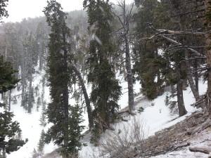 traversing the mountain