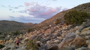 hiking at Joshua Tree