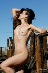 02 Nude Fence 011 web 199x300 A Tight Ass in a Busted Landscape