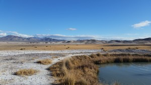 the Tecopa mudhole in winter
